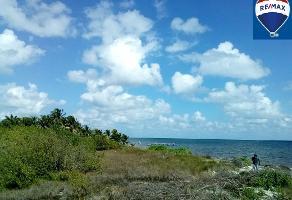 Foto de terreno comercial en venta en rafael e melgar , puerto morelos, benito juárez, quintana roo, 7239243 No. 01