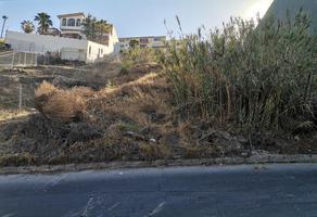 Foto de terreno habitacional en venta en rampa acacias 1, cubillas, tijuana, baja california, 0 No. 01