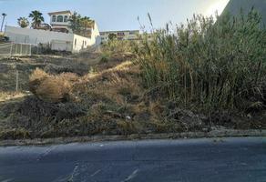 Foto de terreno habitacional en venta en rampa acacias , cubillas, tijuana, baja california, 0 No. 01
