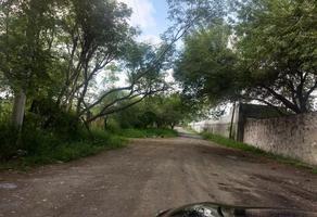 Foto de terreno industrial en venta en rancho alegre , guadalupe zitoon, guadalupe, nuevo león, 21029083 No. 01
