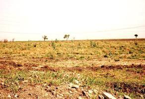 Foto de terreno habitacional en venta en  , rancho alegre, tlajomulco de zúñiga, jalisco, 6082521 No. 01