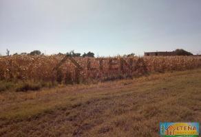 Foto de terreno comercial en venta en rancho atoyac , arandas centro, arandas, jalisco, 4262123 No. 01