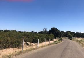 Foto de terreno habitacional en venta en rancho cañada verde 0 , tecate, tecate, baja california, 19347694 No. 01