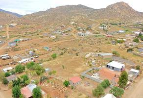 Foto de terreno habitacional en venta en rancho capiri 17 , paraíso, tecate, baja california, 0 No. 01