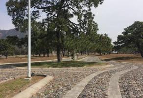 Foto de terreno habitacional en venta en  , rancho contento, zapopan, jalisco, 7063502 No. 02