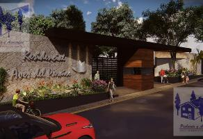 Foto de terreno habitacional en venta en  , rancho cortes, cuernavaca, morelos, 11712021 No. 01