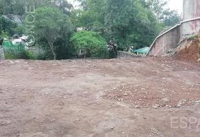 Foto de terreno habitacional en venta en  , rancho cortes, cuernavaca, morelos, 11762802 No. 01