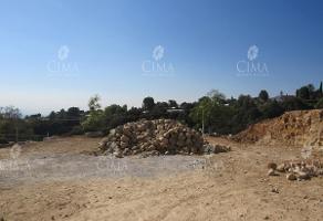 Foto de terreno habitacional en venta en  , rancho cortes, cuernavaca, morelos, 11777407 No. 01