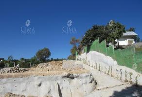 Foto de terreno habitacional en venta en  , rancho cortes, cuernavaca, morelos, 6368011 No. 01