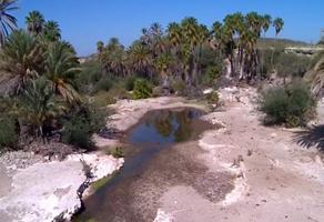 Foto de rancho en venta en rancho el aguajon. kilometro 96, carretera la paz-cd. constitucion , sector santa rita, la paz, baja california sur, 0 No. 01