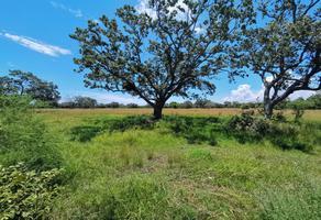 Foto de terreno habitacional en venta en rancho el polvorin , altamira centro, altamira, tamaulipas, 0 No. 01