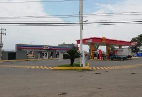 Foto de local en renta en  , rancho el zapote, tlajomulco de zúñiga, jalisco, 0 No. 01