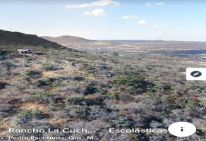 Foto de terreno industrial en venta en rancho escolasticas , pedro escobedo centro, pedro escobedo, querétaro, 10102955 No. 01