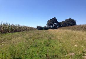 Foto de terreno habitacional en venta en . ., rancho guadalupe, puebla, puebla, 6438026 No. 01