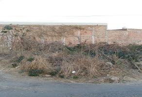 Foto de terreno habitacional en venta en  , rancho la cruz, tonalá, jalisco, 3822098 No. 01