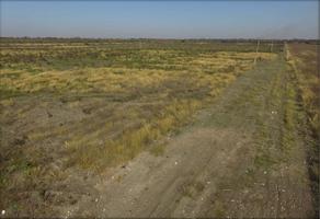 Foto de terreno habitacional en venta en rancho la porra , alegres de terán, general terán, nuevo león, 0 No. 01