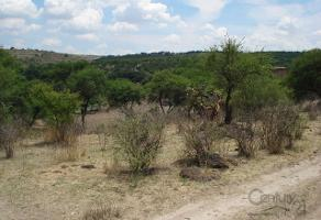 Foto de rancho en venta en rancho la zocona s/n , teocaltiche centro, teocaltiche, jalisco, 4026782 No. 01