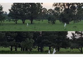 Foto de terreno habitacional en venta en  , rancho laguna colorada de los lópez, durango, durango, 17670375 No. 01