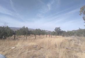 Foto de terreno habitacional en venta en rancho los cedros s/n , fraccionamiento san miguel de casa blanca, durango, durango, 18708319 No. 01