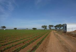Foto de rancho en venta en rancho los magueyes carretera san luis de la paz 7, estación de dolores, dolores hidalgo cuna de la independencia nacional, guanajuato, 10265250 No. 01