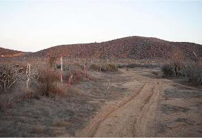 Foto de terreno habitacional en venta en rancho migriño , matancitas, los cabos, baja california sur, 0 No. 01