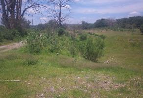 Foto de terreno comercial en venta en rancho nuevo, teocaltiche , bellavista, teocaltiche, jalisco, 6330484 No. 01