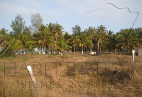 Foto de terreno habitacional en venta en rancho o rancheria la mata, túxpam, veracruz, 92770 , la mata, tuxpan, veracruz de ignacio de la llave, 0 No. 01
