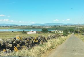 Foto de rancho en venta en rancho palo verde , zapotlanejo, zapotlanejo, jalisco, 14257297 No. 01