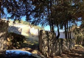 Foto de terreno habitacional en venta en rancho portezuelos 1, santo tomas ajusco, tlalpan, df / cdmx, 6923783 No. 01