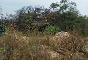 Foto de terreno habitacional en venta en  , rancho san juan, atizapán de zaragoza, méxico, 14211712 No. 01