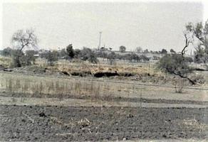 Foto de terreno habitacional en venta en rancho san nicolas , rojas, la piedad, michoacán de ocampo, 13821335 No. 01