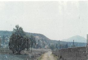 Foto de terreno habitacional en venta en rancho san nicolas , rojas, la piedad, michoacán de ocampo, 0 No. 01