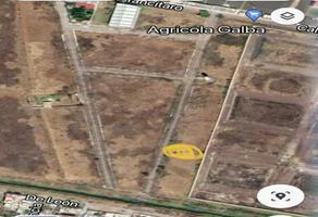 Foto de terreno habitacional en venta en rancho valledo , huertas de san joaquín, zamora, michoacán de ocampo, 0 No. 01