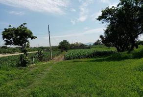 Foto de terreno comercial en venta en rastro 100, san sebastián el grande, tlajomulco de zúñiga, jalisco, 0 No. 01