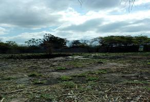 Foto de terreno habitacional en venta en raymundo enriquez , campestre arenal, tuxtla gutiérrez, chiapas, 13799668 No. 01
