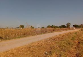 Foto de terreno comercial en venta en real de arandas , arandas, irapuato, guanajuato, 17651502 No. 01
