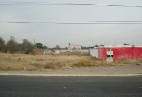 Foto de terreno habitacional en venta en  , real de huejotzingo, huejotzingo, puebla, 10614470 No. 01