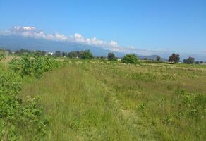 Foto de terreno habitacional en venta en  , real de huejotzingo, huejotzingo, puebla, 0 No. 01