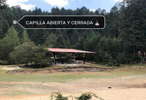 Foto de terreno habitacional en venta en  , real de oriente, mineral de la reforma, hidalgo, 0 No. 01