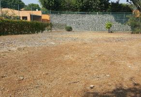 Foto de terreno habitacional en venta en  , real de tetela, cuernavaca, morelos, 13777612 No. 01