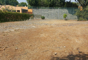 Foto de terreno habitacional en venta en  , real de tetela, cuernavaca, morelos, 18413205 No. 01