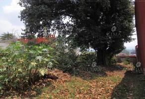Foto de terreno habitacional en venta en  , real de tetela, cuernavaca, morelos, 8887514 No. 01