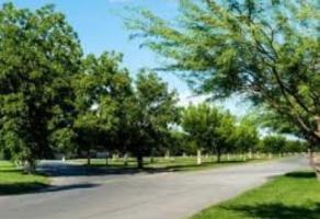 Foto de terreno comercial en venta en real del nogalar 00, real del nogalar, torreón, coahuila de zaragoza, 5164376 No. 01