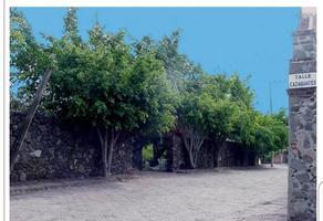 Foto de terreno habitacional en venta en  , real del puente, xochitepec, morelos, 16452021 No. 01