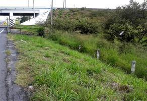 Foto de terreno habitacional en venta en  , real del puente, xochitepec, morelos, 0 No. 01