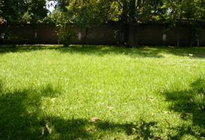 Foto de terreno habitacional en renta en rebeldes 58, centro, yautepec, morelos, 0 No. 01