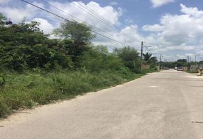 Foto de terreno habitacional en venta en  , reparto granjas, mérida, yucatán, 0 No. 01