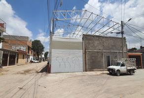 Foto de bodega en renta en republica de haiti 387, satélite francisco i madero, san luis potosí, san luis potosí, 0 No. 01
