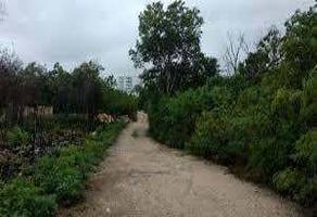 Foto de terreno habitacional en venta en residencial alamos, cancun , álamos i, benito juárez, quintana roo, 0 No. 01