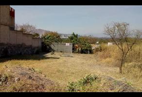 Foto de terreno habitacional en venta en  , residencial lomas de jiutepec, jiutepec, morelos, 9817567 No. 01